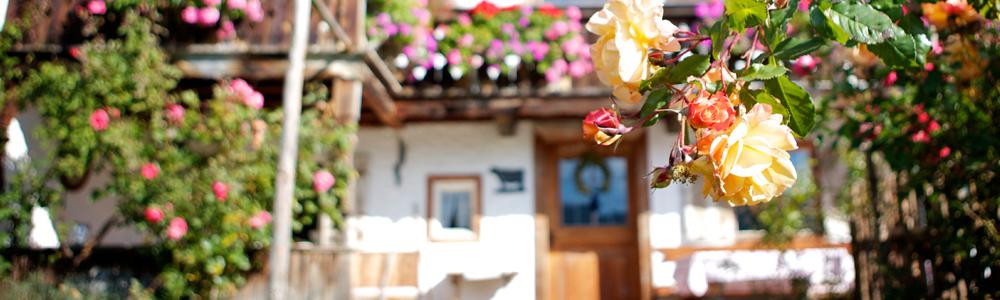 Schliersee - Ferienwohnungen -Sonnenstatter - Urlaub auf dem Bauernhof